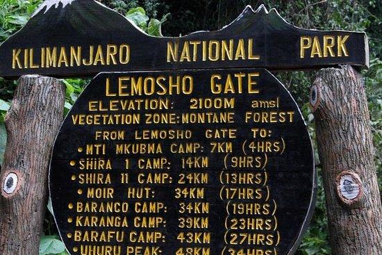 7 Day - Kilimanjaro Lemosho Route