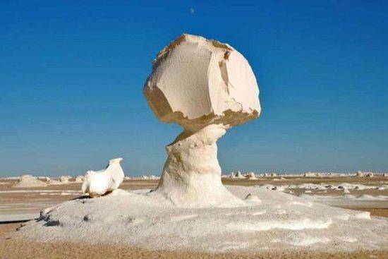 Day tour to White Desert and Bahariya...