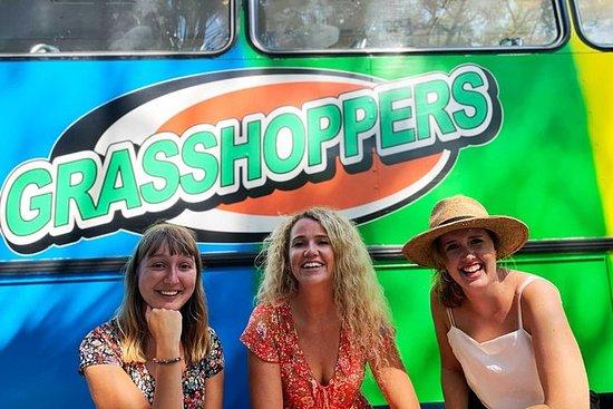 Excursão Grasshoppers Nimbin