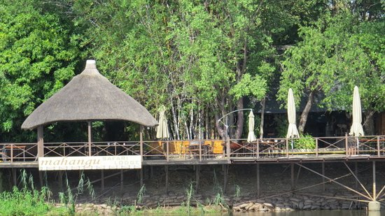 Caprivi Region, Namibie : Mahangu Lodge from the Okavango River