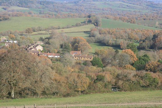 This is a view of 'Pleasant Cottage' in Corscombe Dorset