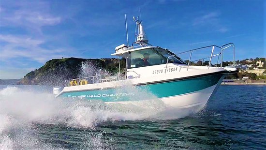 Silver Halo Charters
