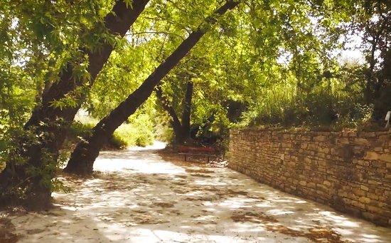 Arsos, Cypr: .