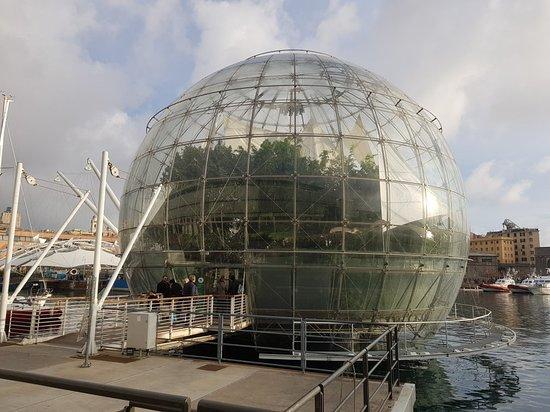 La Biosfera.  Genova Porto antico.
