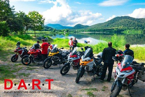 DART Asia