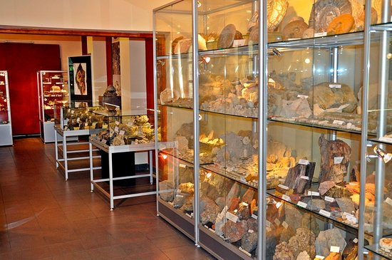 Collection of Minerals and Fossils of Olkusz and the Polsih Jura