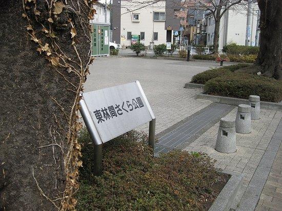 Higashirinkansakura Park
