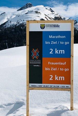 S-chanf, Sveits: 03.03.2019_Eiríkur: Frauenlauf Engadin Skilanglauf bei wunderschönem Wetter und schnellen Loipen.