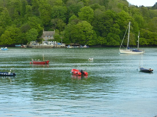 Dittisham, UK: View across the Dart from Cafe.