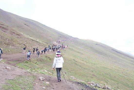 Top Alpaka Travel