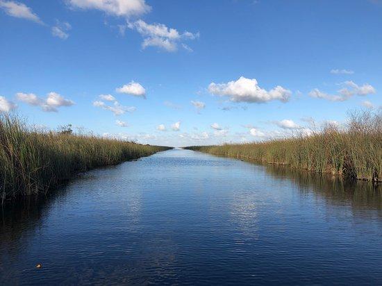 Miami Everglades Connection
