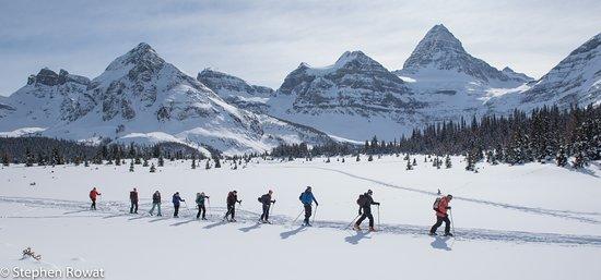 Alpine Touring. Mt Assiniboine is the large peak centre right.