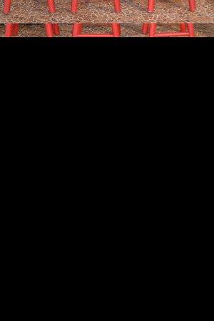 Aribar