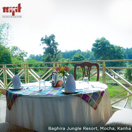 MPT Baghira Jungle Resort Mocha, Kanha: A perfect blend of serenity and excellent hospitality is what best describes Baghira Jungle Resort, Mocha, Kanha. As the resort is located on the banks of Banjar river, you can enjoy your stay here watching the animals from your hotel room and also have some fun playing outdoor games in the premises.
