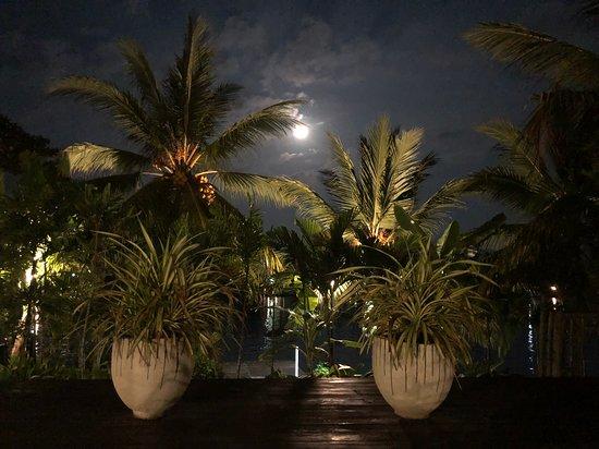 Full Moon at the Riverside.