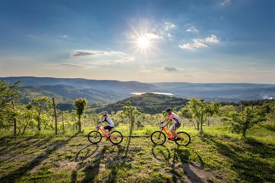 Gracisce, Croatia: Cycling with this breathtaking view-only in central Istria.