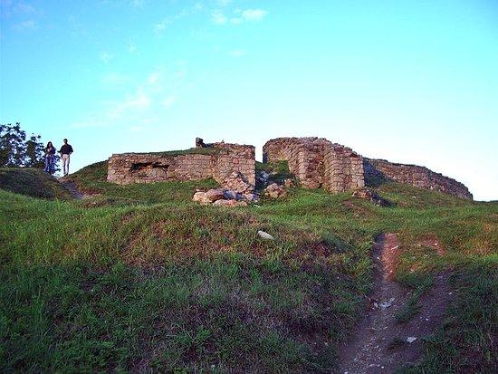 Zamek w Tarnowie na Górze Marcina