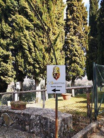 Radda in Chianti-billede