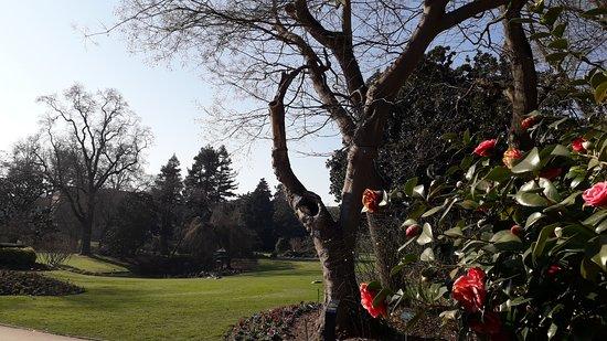 Mariage verdure et fleurs - Picture of Jardin des Plantes, Nantes ...