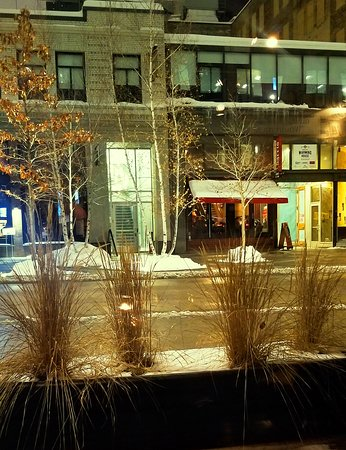 The News Room: View of Nicollet Mall from our table