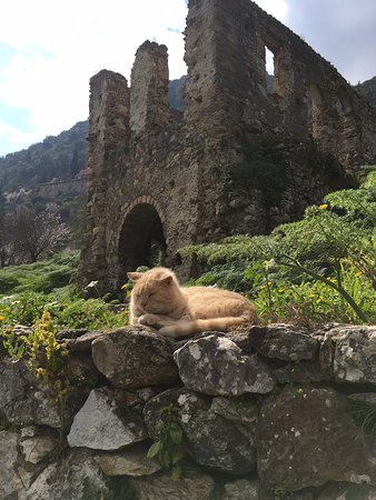 Archaeological Site of Mystras Image