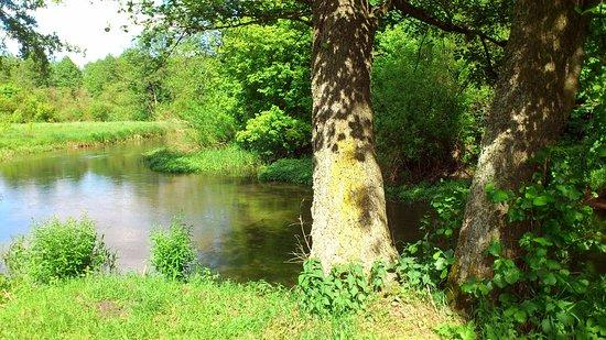 Brest Region, روسيا البيضاء: Village Darevo, river Shchara