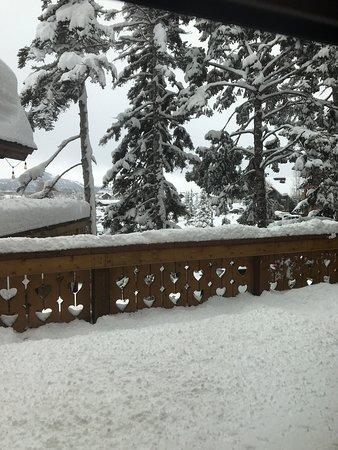 Alpenrose at the Alpenhof Lodge