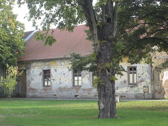 Vukovar-Syrmia County, Croácia: Vukovar, centrum, een van de veeltallige panden met stille getuigen, in de vorm van kogelinslagen, van de oorlog in 1991.
