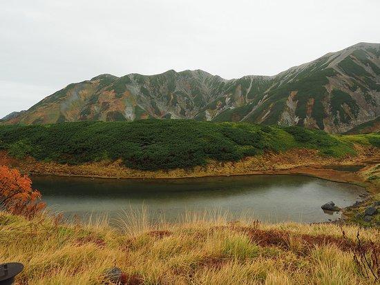 Midorigaike Pond