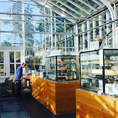 Berlin königliche cafe gartenakademie Das Café