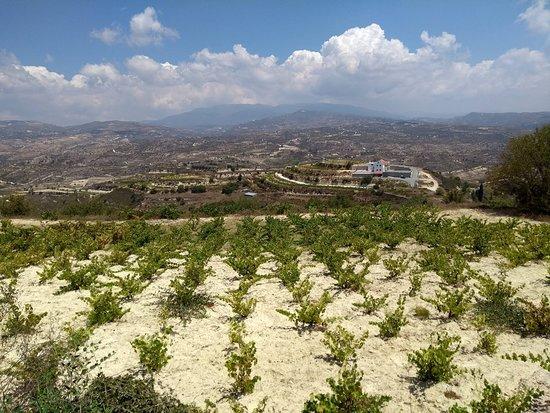 Monolithos Winery
