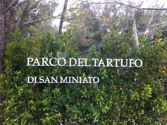 Parco Del Tartufo Di San Miniato