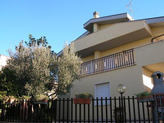 La casa delle magnolie