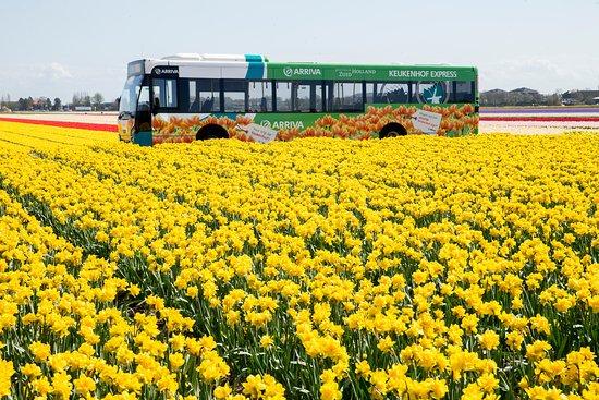 Arriva Personenvervoer Nederland