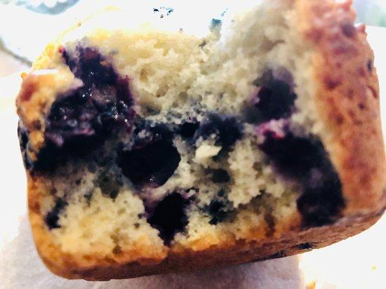 Thomaston, ME: Blueberry Muffin