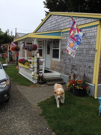 Grayland, WA: One of the cottages at the Ocean Spray Beach Resort.