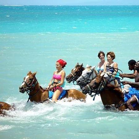 Horse back riding in the sea. So much fun!!!!