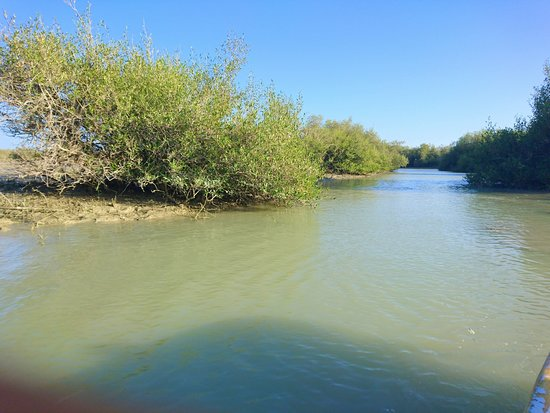Chabahar, Iran: Mangrove forests are located at the village of Gwater (or Gwadar) it is the south-easternmost village of Sistan & Balouchestan province and Iran.