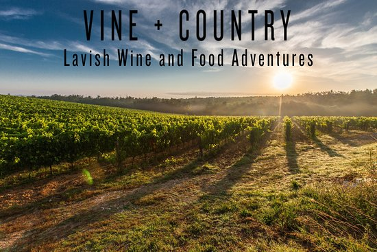 Vine and Country Tours