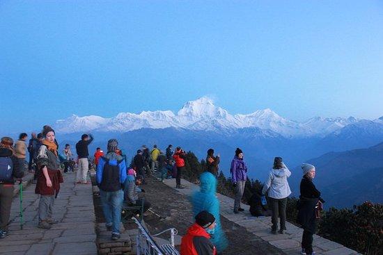 Annapurna Poon Hill Trekking - 4...