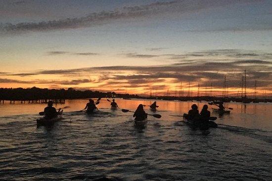 Tour Sunset Kayak en el puerto de...