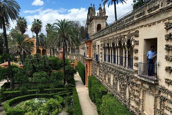 Pack Deluxe: Cena Catedral-Alcázar en...