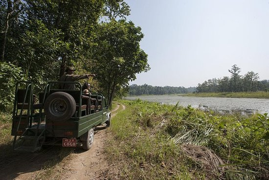 3 netter Chitwan Jungle Safari Tour...