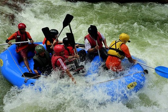 White Water Rafting and Jungle tree...
