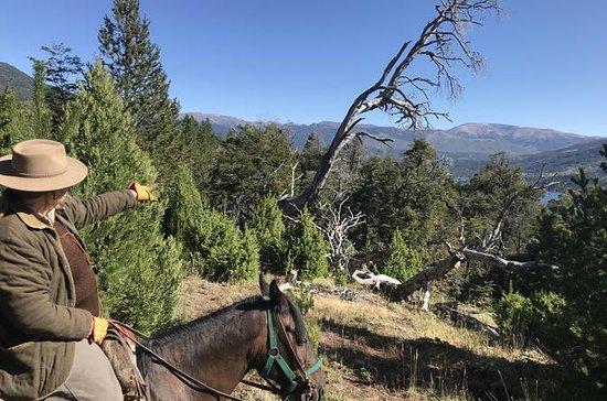 HORSEBACK RIDING in Lolog Lake - Full...