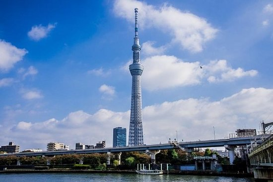Private Walking Tour of Tokyo with a...