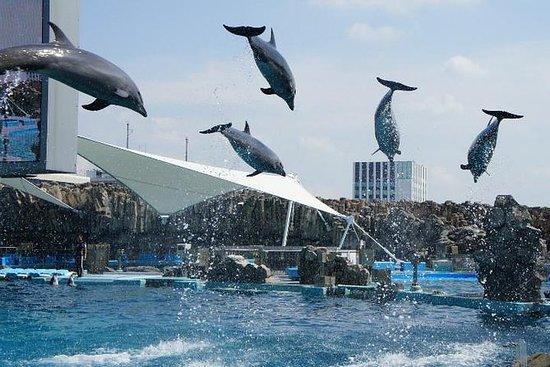 Port of Nagoya Public Aquarium Ticket...