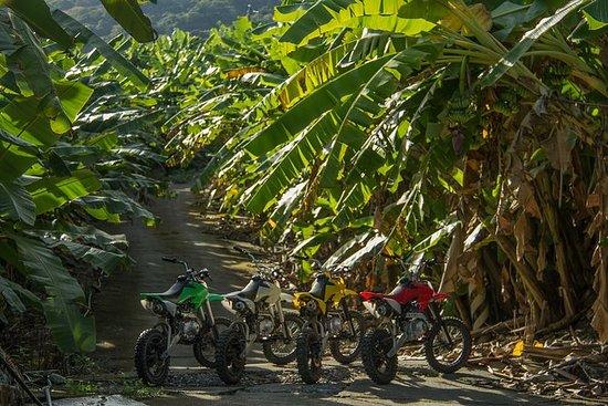 Motobike di Hualien Banana Grove
