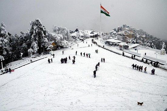 6-dagers Private Shimla og Manali tur...