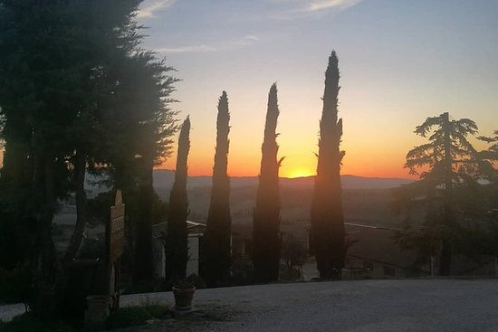 Brunello葡萄酒之旅和Val D'Orcia景觀